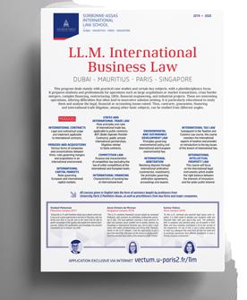brochure-LLM-presentation